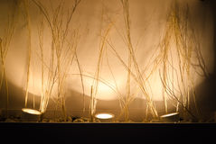 Abstract lighting decoration Royalty Free Stock Photo