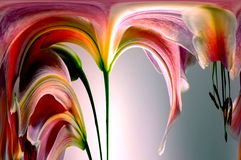 Abstract Lilly Stock Images