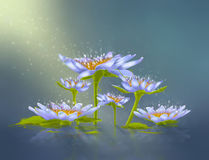 Abstract lily Stock Image