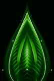 Abstract line and curve green on dark background Royalty Free Stock Photo