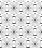 Abstract linear hexagonal flowers. Seamless vector pattern.  Stock Photography