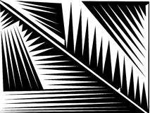 Abstract lines. Black and white image Royalty Free Stock Image