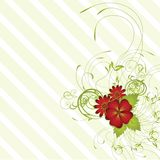 Abstract lines floral background Royalty Free Stock Image