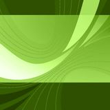 Abstract lines on a green background Stock Photography