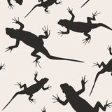 Abstract lizards Stock Photo