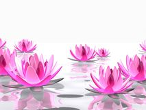 Abstract lotus. 3d rendered illustration of pink lotus flowers on water Stock Photo