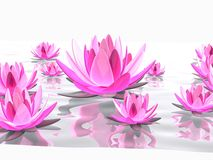 Abstract lotus Stock Images
