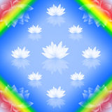 Abstract lotus background Stock Image