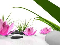 Abstract lotus garden. 3d rendered illustration of pink lotus flowers, stones and grass Stock Photo