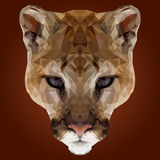 Abstract Low Poly Puma Design Stock Photography