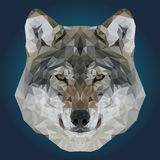 Abstract Low Poly Wolf Design Stock Images