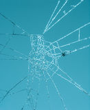 Abstract macro of afrozen spiderweb Stock Images