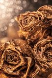Abstract macro fine-art background with golden roses and water drops. Symbol of love, wealth, rich. Abstract macro fine-art background with golden roses and stock images