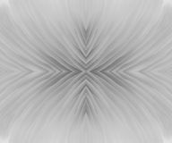 Abstract macrobeeld als achtergrond van paddestoel Stock Afbeelding