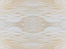 Abstract macrobeeld als achtergrond van paddestoel, sajor-Cajupaddestoel Stock Afbeelding