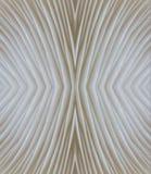 Abstract macrobeeld als achtergrond van sajor-Cajupaddestoel Stock Fotografie