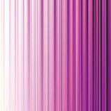 Abstract magenta stripe background Royalty Free Stock Images