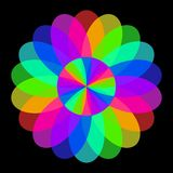 Abstract mandala in rainbow colors, Flower isolated on black background, Multicolor bloom, Colorful esoteric petal mandala Stock Images