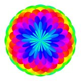 Abstract mandala in rainbow colors. Flower isolated on white background. Multicolor bloom. Colorful esoteric petal mandala. Royalty Free Stock Photography