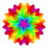 Abstract mandala in rainbow colors, Flower isolated on white background, Multicolor bloom, Colorful esoteric petal mandala Royalty Free Stock Image