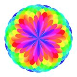 Abstract mandala in rainbow colors, Flower isolated on white background, Multicolor bloom, Colorful esoteric petal mandala Royalty Free Stock Photos