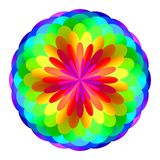 Abstract mandala in rainbow colors, Flower  on white background, Multicolor bloom, Colorful esoteric petal mandala Stock Photos