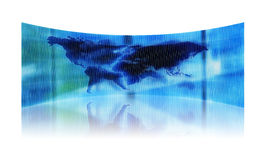 Abstract map of the world. Reflected Stock Photography