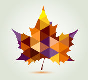 Abstract maple leaf. Abstract autumn maple leaf with polygonal ornament Stock Photos