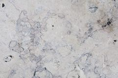 Abstract marble background. Close-up Stock Images