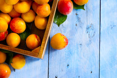Abstract market background fruits on a wooden background Stock Images