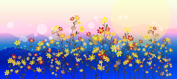 Abstract meadow flowers. Abstract flowers in the meadows, landscape, floral background Stock Images