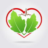 Abstract medical health icon with silhouette of stylized heart s. Hape, pair of green leaves and line of cardiogram and shadow. Can used as logo, symbol or stock image