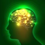 Abstract Menselijk Hoofdsilhouet met Hersenen Stock Fotografie