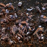 Abstract metallic swarf back Stock Photography
