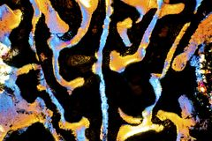 Abstract micrograph of patterns in glue on a microscope slide. stock images
