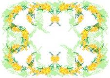 Abstract mimosa frame Stock Photos
