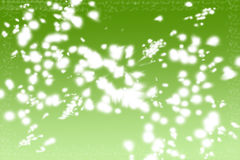 Abstract moder background. Abstract modern background in green and white Stock Photo