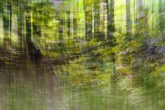 Abstract motieonduidelijk beeld, bomenboomstam & bladeren, geelgroene backgro Royalty-vrije Stock Foto's