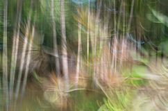 Abstract motion blur. Flower & leave, yellow green background Stock Photos