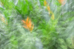 Abstract motion blur, flower & leave. Yellow green background Royalty Free Stock Photo