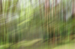 Abstract motion blur, trees trunk & leave, yellow green backgrou. Nd Stock Photography