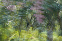 Abstract motion blur, trees trunk & leave, yellow green backgrou. Nd Royalty Free Stock Photo