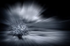 Abstract motion blured background. With alone tree Royalty Free Stock Photography