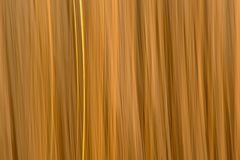 Abstract motion blurred reed background. Abstract motion blurred light yellow reed background texture royalty free stock photography