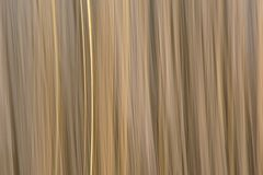 Abstract motion blurred reed background. Abstract motion blurred light yellow reed background texture stock image