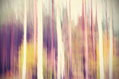 Abstract motion blurred trees in a forest Stock Image
