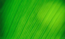 Abstract motion graphic background Stock Images