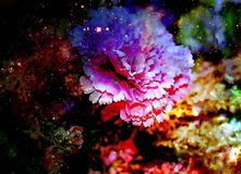 Abstract multicolor flower motive collage in space. Stock Image
