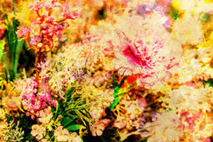 Abstract multicolor flower motive collage in space. Old effect. Royalty Free Stock Photography