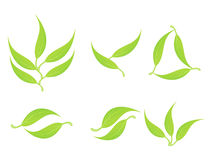 Abstract multiple green eco leaf Stock Image